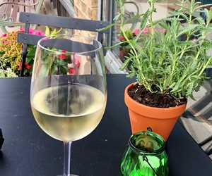 Embrace summer! Have a glass wine and apps outside!