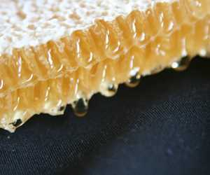 Amazing local honey comb from Dancing Bee Honey (Black Earth)